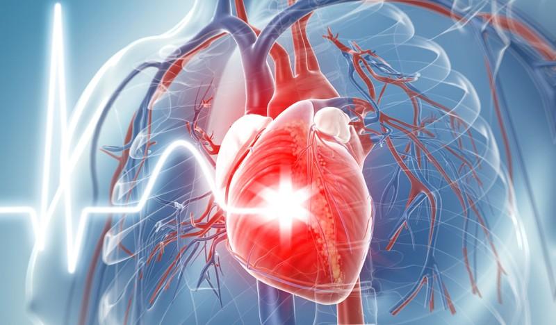 Enfermedades Cardiovasculares I; Hipercolesterolemia.